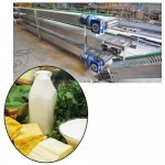 Conveyor Systems for Food & beverage Industries