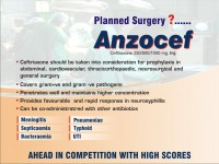 Anzocef