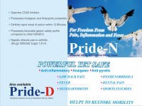 Pride-n
